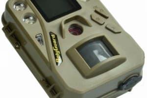 Самая компактная фотоловушка в мире - Bolyguard SG520