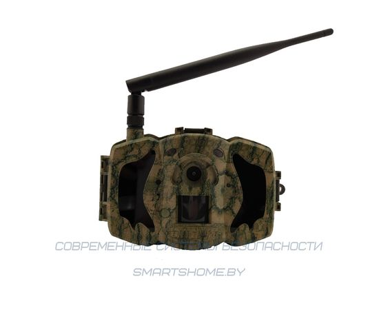 Фотоловушка BolyGuard MG984G-36M, фото , изображение 6